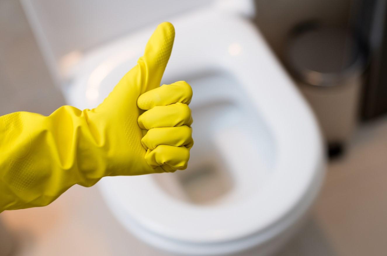 Astuces Pour Déboucher Les Toilettes